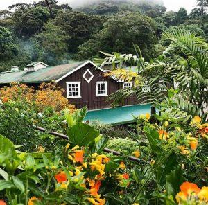 Finca Lerida: Mi Guia Panamá