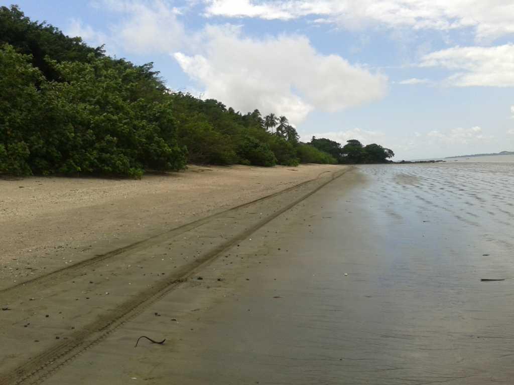 playa-santa-catalina1-mi-guia-panama