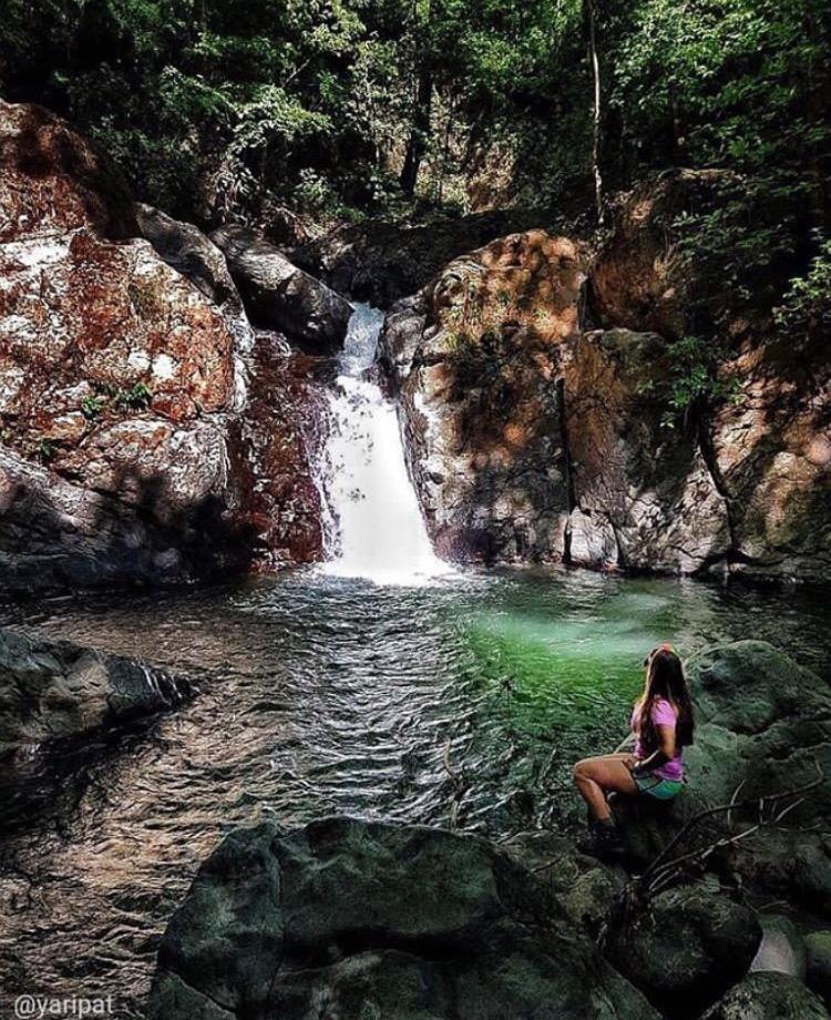 Reserva Forestal La Tronosa: Mi Guia Panamá