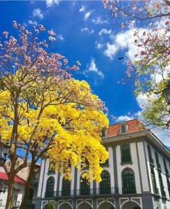 Museo del Canal: Mi Guia Panamá