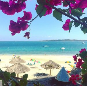Isla Contadora: Mi Guia Panama