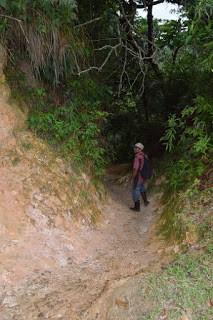 sendero-cerro-marta-mi-guia-panama